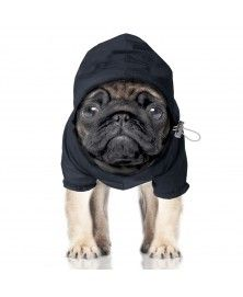 Coupe-Vent Preppy Navy pour chiens - Milk&Pepper