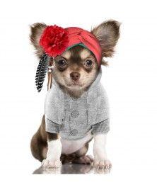 Sweat Anouchka Gris pour chiens - Milk&Pepper