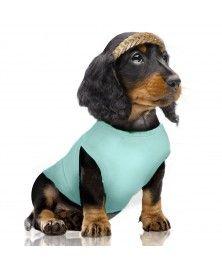 T-Shirt Sandia pour chiens - Milk&Pepper