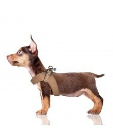 Dandy  Harness for dogs - Milk&Pepper
