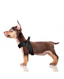Dandy Harness Black for dogs - Milk&Pepper