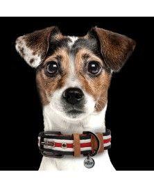 Collier Héritage pour chiens - Milk&Pepper