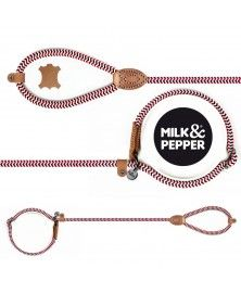 Lasso Yacht leash for dogs - Milk&Pepper
