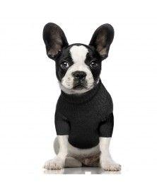 Azuka Sweat for dog - Milk&Pepper