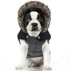 Manteau Gazoline pour chien - Milk&Pepper