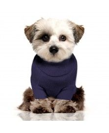 Norah Sweater for dogs - Milk&Pepper