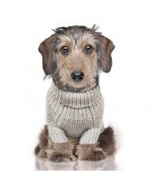 Irish Sweater for dogs - Milk&Pepper