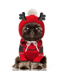 Narvik Christmas sweater for dogs - milkandpepper