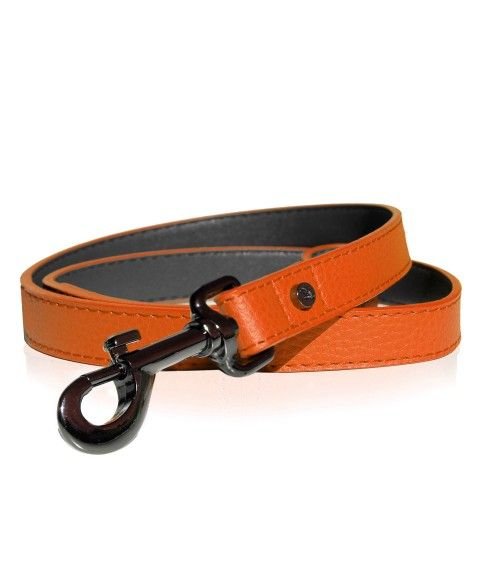 Milk&Pepper Orange Dandy dog's Leash