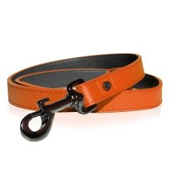 Milk&Pepper Orange Dandy dog's Leash
