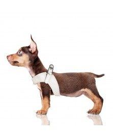 Harnais Parachute Dandy ivoire pour chien Milk&Pepper