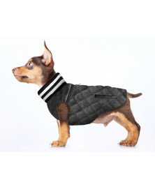 Teddy dog jacket - Milk&Pepper