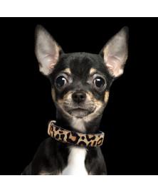 Leopard leather dog collar - Milk&Pepper