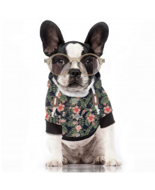 Kahala Milk&Pepper Dog Hoody