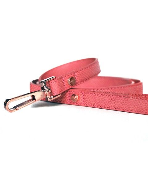 Leash Naja Rose