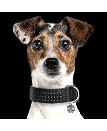 Collier Amaya Black pour chiens - Milk&Pepper