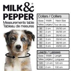 Guide des tailles colliers pour chiens - Milk&Pepper