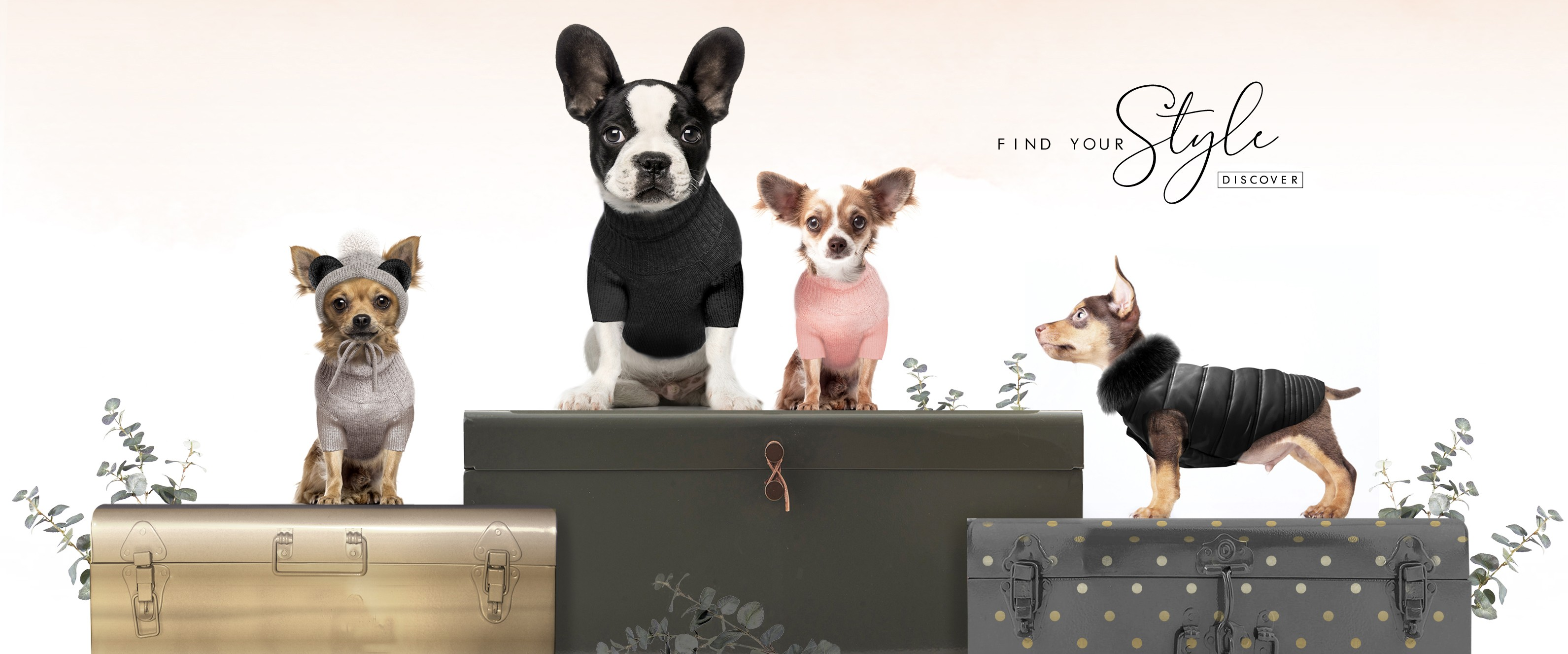 Milk & Pepper, Fashion And Accessories For Dogs & Cats - Winter 2018