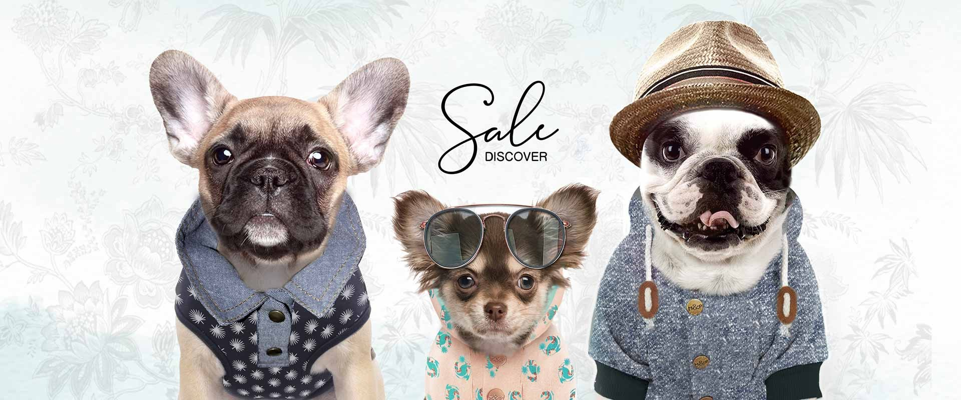 Milk & Pepper Fashion And Accessories For Dogs & Cats