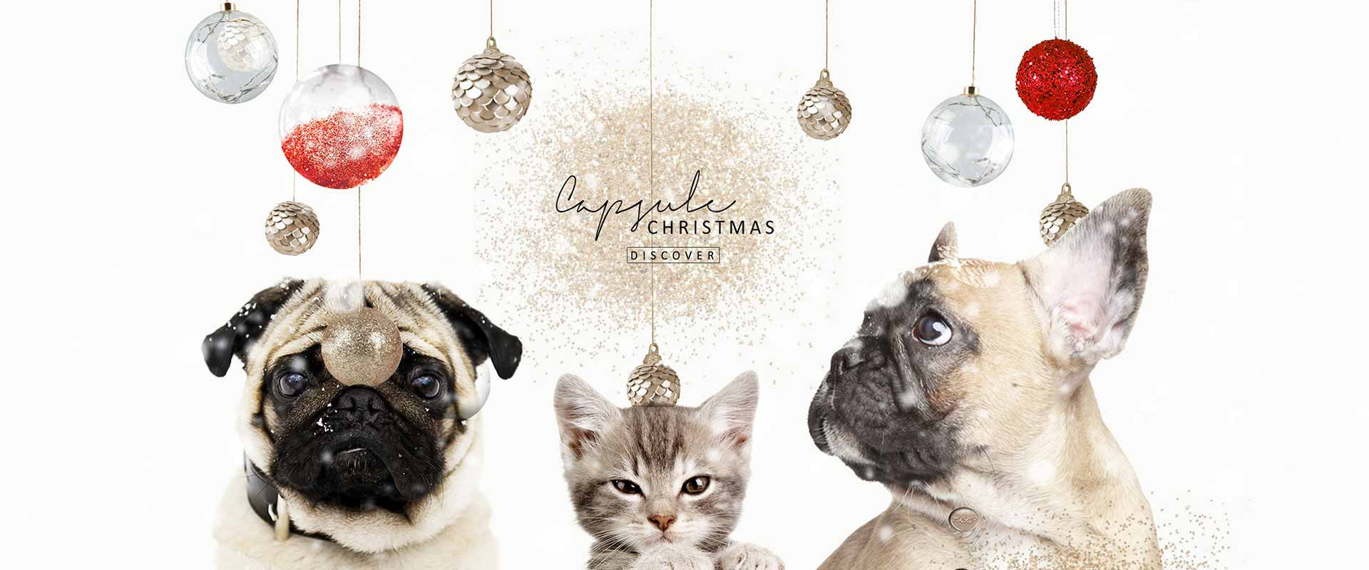 Milk & Pepper, Fashion And Accessories For Dogs & Cats - Christmas Collection 2019