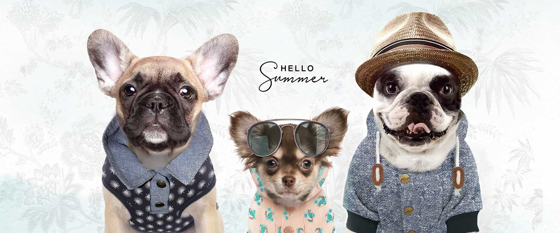 Milk & Pepper, Fashion And Accessories For Dogs & Cats - SUMMER 19