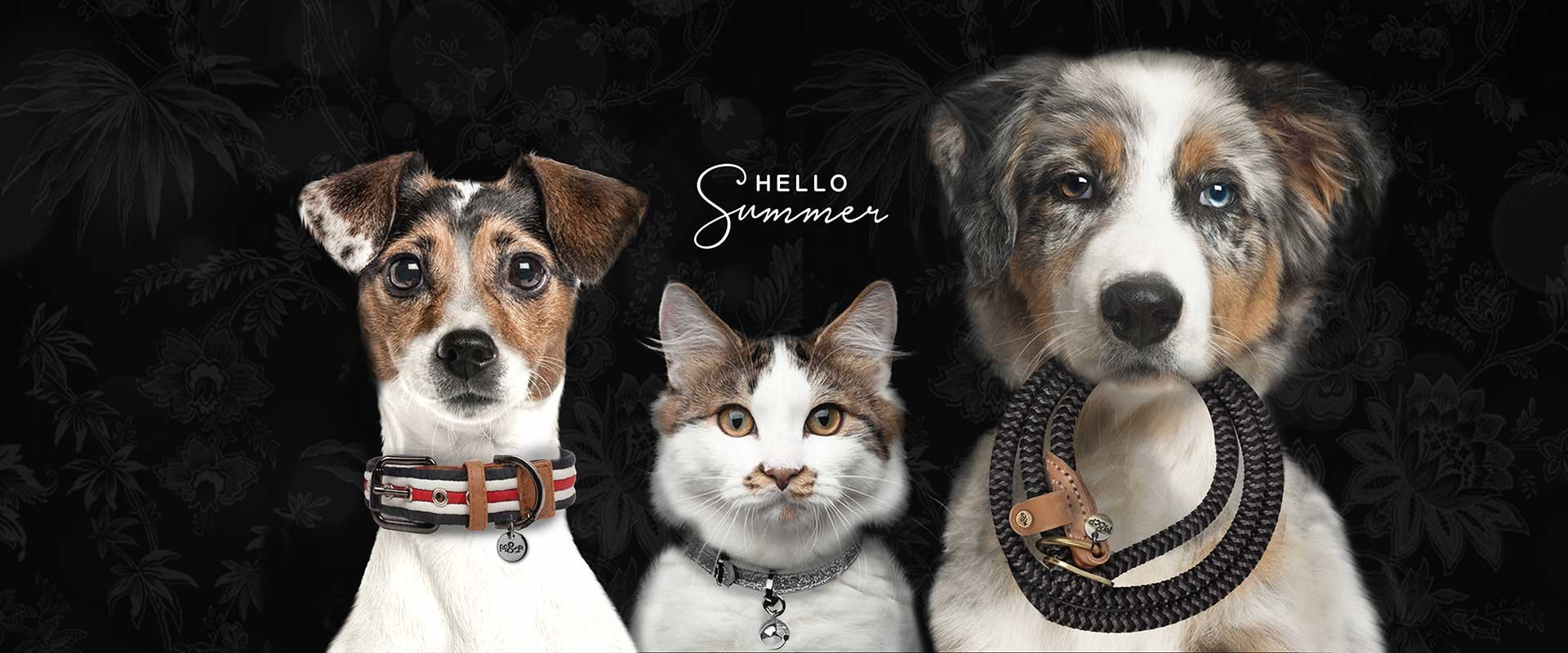 Milk & Pepper, Fashion And Accessories For Dogs & Cats -  Accessories Summer 2019