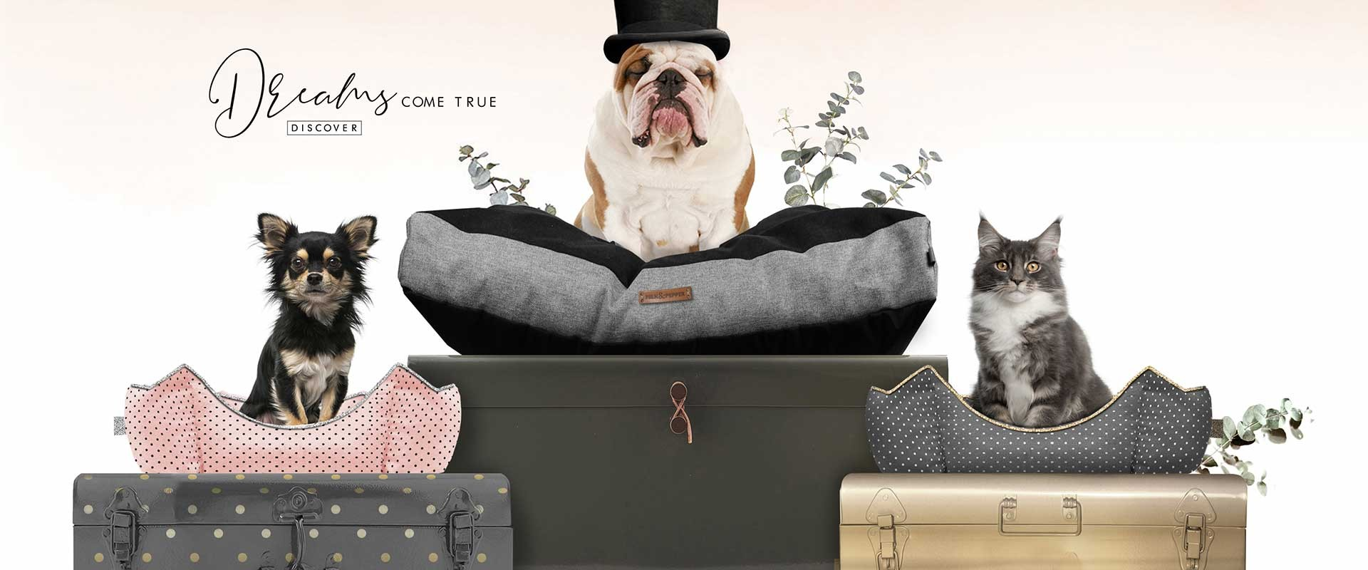 Milk & Pepper, Fashion And Accessories For Dogs & Cats - Home Winter 2018