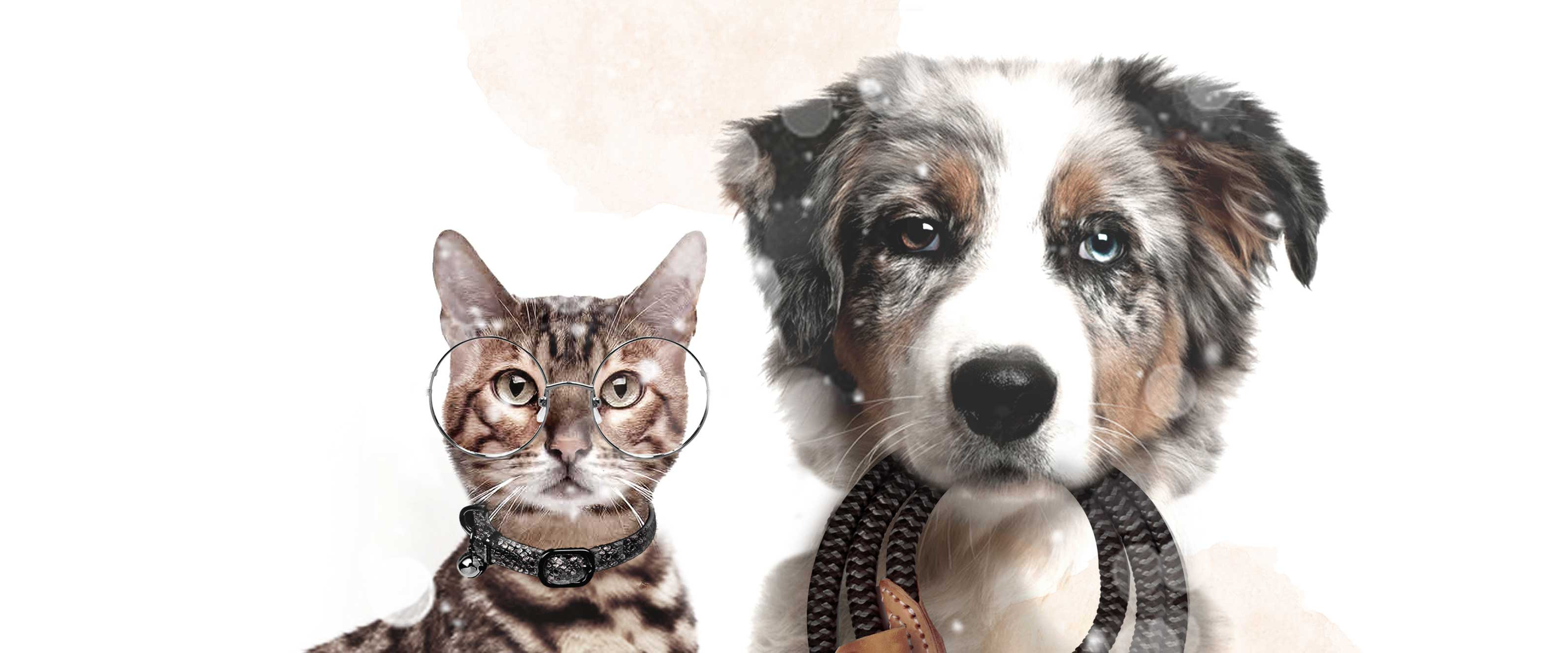 Milk & Pepper, Fashion And Accessories For Dogs & Cats -  Accessories Winter 2020