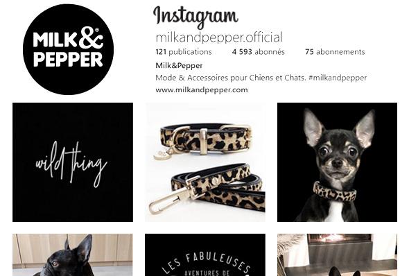 Milk&Pepper Instagram
